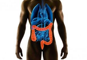 Как часто можно и надо делать колоноскопию кишечника
